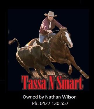 Tassa N Smart