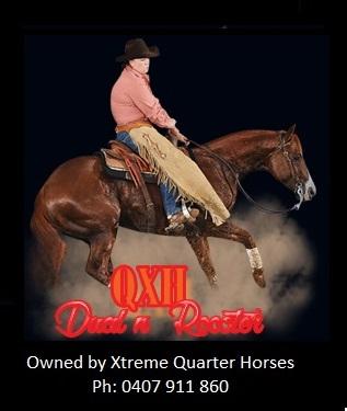 15 QXH Dual n Rooster.jpg