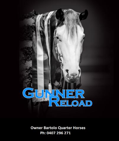 Gunner Reload Image.png